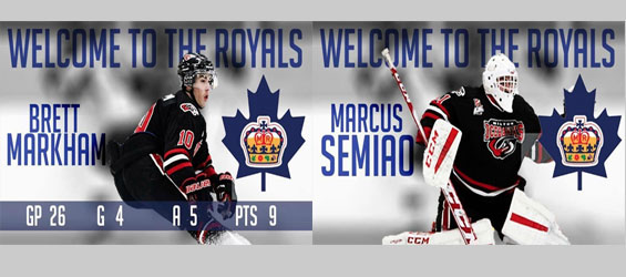 Markhamtoday royals acquire forward and goalie from